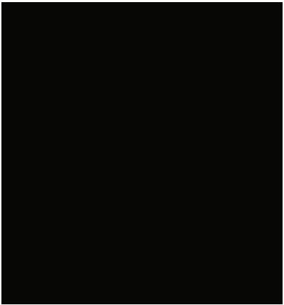 99ghosts logo